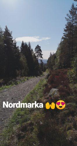 Bilde av Nordmarka